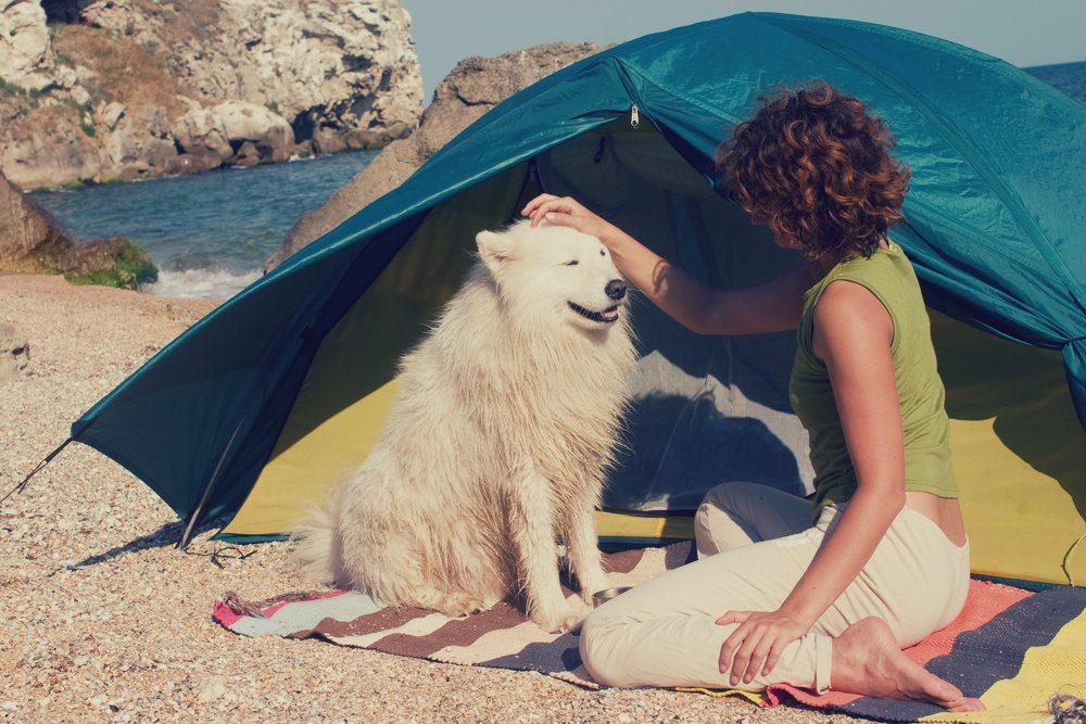 Le 5 migliori spiagge italiane per i vostri cani