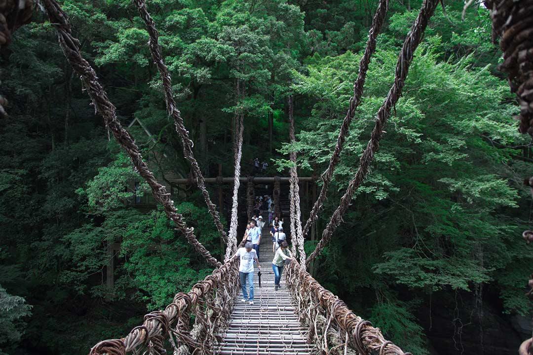 Ponte Iya no Kuzarabashi