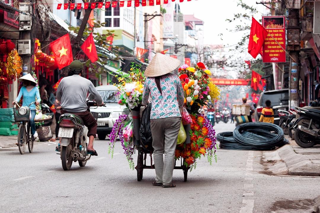 dove-anadare-vietnam