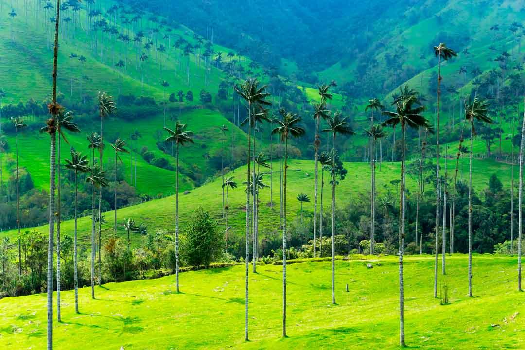 colombia-clima